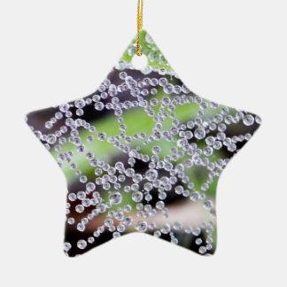 Ornamento de la estrella del Web del agua Adorno Navideño De Cerámica En Forma De Estrella