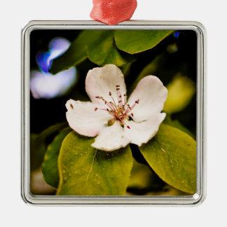 Ornamento de la flor blanca adorno cuadrado plateado