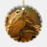 Ornamento de la foto de la tortuga adornos de navidad