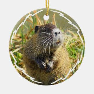 Ornamento de la foto del castor ornamento de navidad