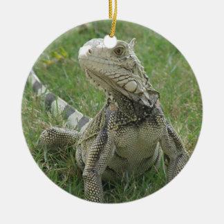 Ornamento de la iguana ornaments para arbol de navidad