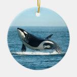 Ornamento de la infracción de la orca adorno navideño redondo de cerámica