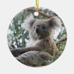 Ornamento de la koala adornos de navidad