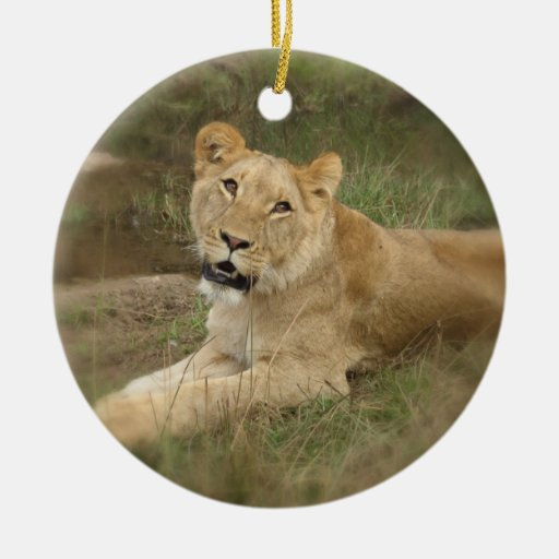 Ornamento de la leona adorno navideño redondo de cerámica