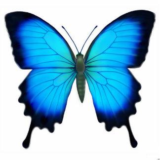 Ornamento de la mariposa de Papilio Ulises Esculturas Fotograficas