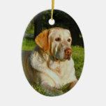 Ornamento de la memoria del mascota - haga sus los ornamento para arbol de navidad