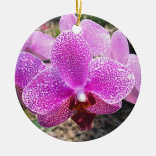 Ornamento de la orquídea adorno navideño redondo de cerámica