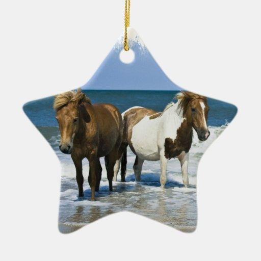 Ornamento de la playa del caballo adorno de cerámica en forma de estrella