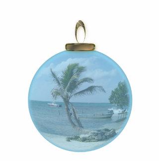 Ornamento de la playa del paraíso esculturas fotograficas