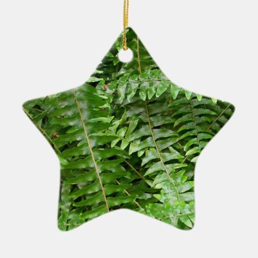 Ornamento de las frondas del helecho adorno navideño de cerámica en forma de estrella