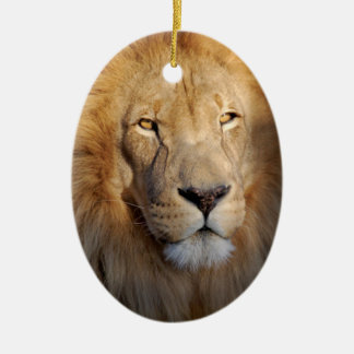 Ornamento de las imágenes del león ornaments para arbol de navidad