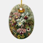 Ornamento de las orquídeas adornos