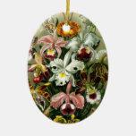 Ornamento de las orquídeas ornamentos de reyes magos