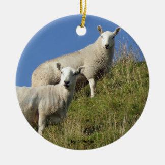 Ornamento de las ovejas de la hermana ornamento de reyes magos