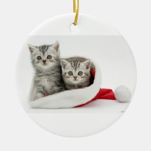 Ornamento de los gatitos del navidad ornamento para reyes magos