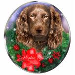 Ornamento de los regalos del navidad del perro de  escultura fotográfica