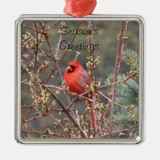 Ornamento de los saludos de la estación cardinal adorno navideño cuadrado de metal