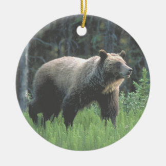 Ornamento de maderas del oso grizzly adorno navideño redondo de cerámica