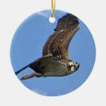 Ornamento de Osprey del vuelo Adorno Navideño Redondo De Cerámica