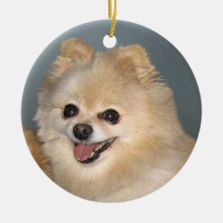 Ornamento de Pomeranian Ornamentos De Reyes