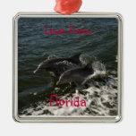 Ornamento de salto de los delfínes ornato