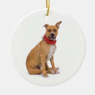 Ornamento de Staffordshire Terrier americano Ornamentos De Reyes