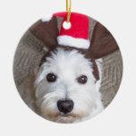 Ornamento de Westie Adornos De Navidad