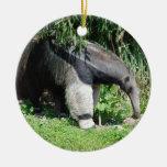 Ornamento del Anteater gigante Adornos De Navidad