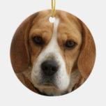 Ornamento del beagle adorno para reyes