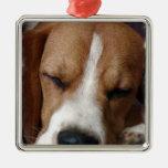 Ornamento del beagle el dormir adornos de navidad