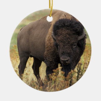 Ornamento del bisonte americano adornos de navidad