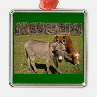 Ornamento del burro y de la vaca ornato