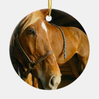 Ornamento del caballo de la castaña ornato