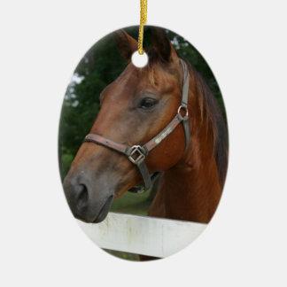 Ornamento del caballo de la castaña dulce adornos