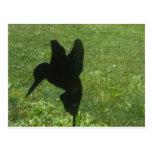 ornamento del césped del colibrí postales