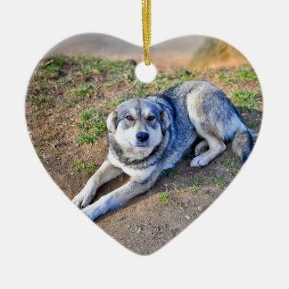 Ornamento del corazón del perro adorno de cerámica en forma de corazón