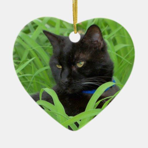 Ornamento del cumpleaños del gato negro de Bombay Adorno De Cerámica En Forma De Corazón