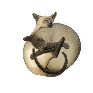 Ornamento del día de fiesta de los gatos siameses esculturas fotograficas