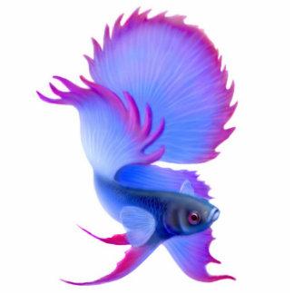 Ornamento del día de fiesta de los pescados de Bet Escultura Fotográfica