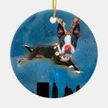 Ornamento del día de fiesta de Rudolph del mirabel Ornamentos De Reyes Magos