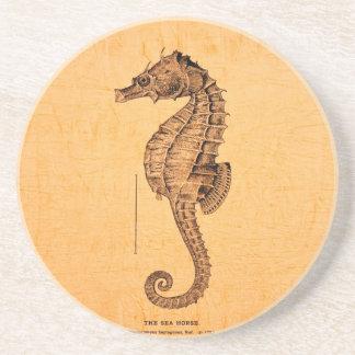Ornamento del ejemplo del caballo de mar del vinta posavasos cerveza
