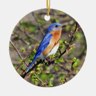 Ornamento del este del Bluebird Adorno De Navidad