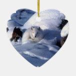 Ornamento del Fox ártico Ornamento Para Reyes Magos