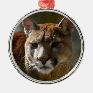 Ornamento del gato del puma adornos