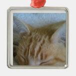 Ornamento del gato el dormir ornamento de navidad