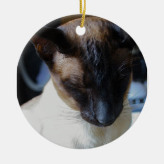 Ornamento del gato siamés ornatos