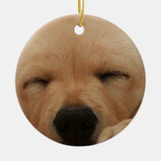 Ornamento del golden retriever el dormir adorno de navidad