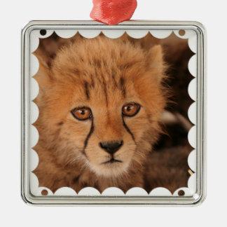 Ornamento del guepardo del bebé ornamentos de navidad