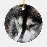 Ornamento del husky siberiano ornamento para reyes magos