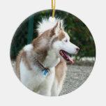 Ornamento del husky siberiano ornamento para arbol de navidad